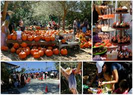 Pumpkin Patch With Petting Zoo by Fall Faire And Pumpkin Patch At The Environmental Nature Center