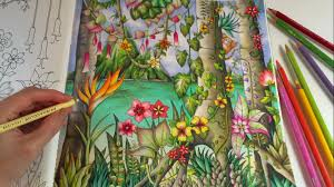 Magical Jungle Tropical Paradise