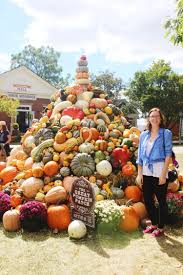 The Great American Pumpkin Patch Arthur Il by The Last Of The Road Trip To Tennessee U2014 Maddily