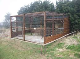 Bird Aviarie | Bird Aviaries | Pinterest | Birds, Things To And ... Google Image Result For Httpaussiefinchbreedcomphotogallery Parrot Aviary Outdoor Sale Net Avaries Birds Button Quail Aviary A View From My Summerhouse Macaw And Pigeon Youtube Recent Backyard Chickens Amazoncom Omitree Large Pet Cage Cockatiel Conure The Rescue Report The Old Lady Pigeons Retirement Home Building A Flight Or Coz Amazing 26 Backyard Ideas On Rdcny Best Price On Hotel In Siem Reap Reviews