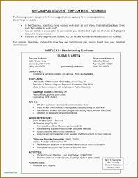 45 College Graduate Resume Sample