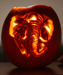 Elephant Pumpkin Carving Pattern Easy by Norbini U0027s Most Interesting Flickr Photos Picssr