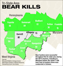 Md. Wildlife Agency Has Many Great Tips For Bear Hunters | Bear Hunt ... Trucks Hit The Road For Final Western Maryland Truck Show Railways West Sub Used Cars Accident Md Art Butler Auto Sales Koons Annapolis Toyota New 82019 Car Dealer Serving The Complete List Of Charlottes 58 Food Trucks Charlotte Agenda Freightliner Star Dealership Tag Center A Trucker Asleep In Cab Selfdriving Could Make That Md Wildlife Agency Has Many Great Tips Bear Hunters Bear Hunt Sale 21520 Hot Shot Ram Winston Salem Nc North Point Branding Archives Brigtees Cab Chassis For N Trailer Magazine