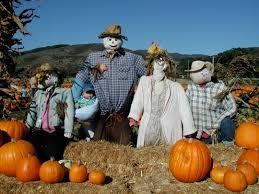 Nearby Pumpkin Patches by Farmer Bob U0027s Pumpkin Farm In Half Moon Bay Ca Parent Reviews