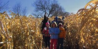 Central Wisconsin Pumpkin Patches by Wilke U0027s Corn Maze U0026 Pumpkin Patch Wausau Wi Convention And