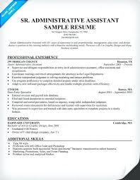 Resume Examples Senior Executives And Sales Marketing