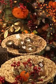 Christmas Tree Shop Jobs Albany Ny by Home Garland Nursery