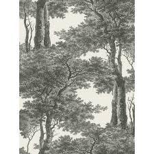 Passepartout Trees Wallpaper Black And White Rasch 605419