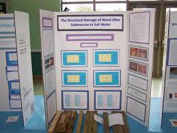 Journalist Best Counseling Bulletin S Counselor Creative Science Fair Display Board Ideas