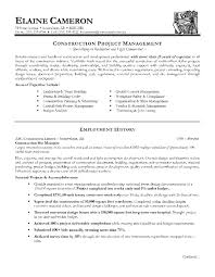 Construction Project Manager Resume Examples Example Of A Sample