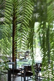 Mrs Wilkes Dining Room Menu by Best 10 Summer House Restaurant Ideas On Pinterest Paradise Bar