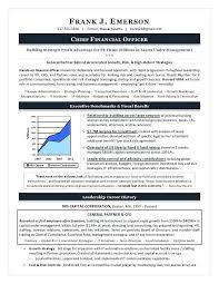 Cfo Resume Sample From Hr Executive Leadership Resumes Rh Euromembrane2012 Com VP Engineering For Position