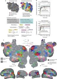 Numpy Tile New Axis by Natural Speech Reveals The Semantic Maps That Tile Human Cerebral