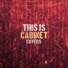 Just Cabinets Scranton Pa by This Is Cabinet Covers Cabinet