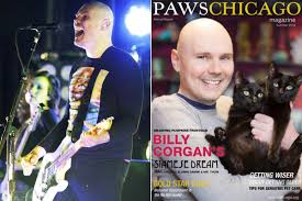 Smashing Pumpkins Lead Singer by Billy Corgan Poses For Cat Magazine Cover New York Post