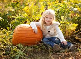 Halloween Farms In Illinois by Grafton Farm Reopens Summer 2017 U2014 Eckert U0027s Family Farms And