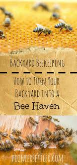 Backyard Beekeeping | Outdoor Living, Backyards And Outdoor Living ... How To Keep Bees A Beginners Guide Bkeeping Deter And Wasps And Identify Which Is Family 2367 Best Homestead Animals Images On Pinterest Poultry Raising Best Bee Hives Images Photo Wonderful To Away Become A Backyard Bkeeper Fixcom Why Your Child Needs Working Bee Urban Honey Back Yard Made Simple Image On Marvellous 301 Keeping Bees 794 The Complete 7step Chickens In Plants That Simplemost