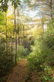 Green Knob Trail 2 3 miles Moderate Milepost 295 9