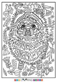 Free Printable Pomeranian Coloring Page Available For Download Simple And Detailed Versions Adults