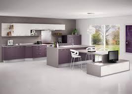 cuisine delinia type de cuisine luxe meuble de cuisine delinia position type