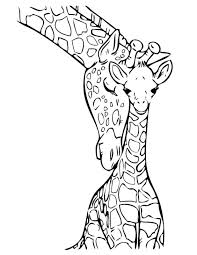 Giraffe Coloring Book Pictures Picture Printable For Adults Pages Kids Colouring