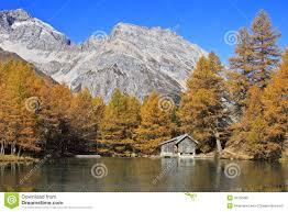 100 Log Cabins Switzerland Little By Palpuogna Lake In Engadina Stock