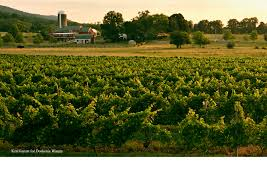 Greenbrier Farms Pumpkin Patch Chesapeake Va by Fieldstone Farm B U0026b Virginia Is For Lovers
