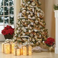 1 Christmas Tree Rentals Toronto