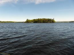 100 Mary Lake Ontario Muskoka Muskoka Real Estate Services