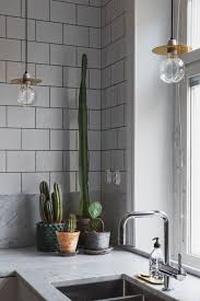 Pot Plants For The Bathroom by 100 Best Bathroom Pot Plants Best 25 Potted Plants Ideas On