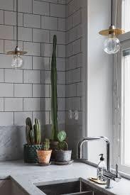 Best Plants For Bathroom Feng Shui by Bathroom Design Marvelous Bathroom Plants Uk Bathroom Plant