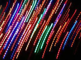 Alameda Christmas Tree Lane by Natural Selection Christmas Lights