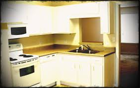 Full Size Of Rental Apartment Kitchen Decorating Ideas Small Interior Design In Apartments Picture Awesome Excellent