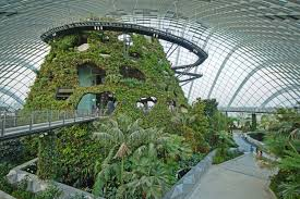 File Cloud Forest Gardens by the Bay Singapore 05