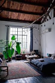 plante verte dans une chambre à coucher les plantes représentent elles un danger dans la chambre