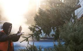 Seattle Christmas Tree Disposal 2015 by Bellingham Ends 27 Year Old Clean Green Program The Bellingham
