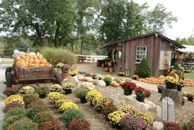Rombachs Pumpkin Patch Hours by Eagle Fork Home Page