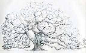 Nature Scene Drawings HERE
