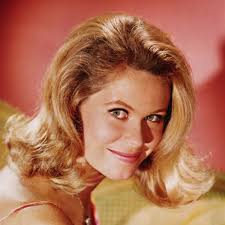 Blood On The Dance Floor Bewitched Meaning by Elizabeth Montgomery Actress Classic Pin Ups Television