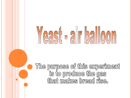 Lava Lamp Science Project Results by Yeast Air Balloon