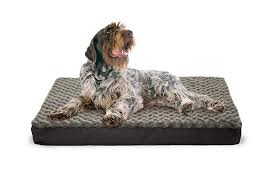 Top Rated Orthopedic Dog Beds by Top 10 Best Cheap Dog Beds Heavy Com