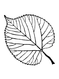 Trees Leaves Coloring Pages