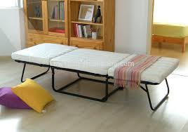 fancy folding guest bed ikea sleeper chair foam bedsingle fold out