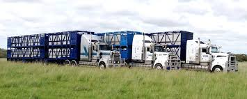 100 Insurance For Trucks Peter Cameron Commercial Motor Vehicles And