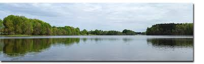 Sink Florida Sink Bass Tab by Winter Bass Fishing In Florida Bass Grab