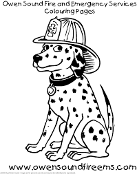Dalmatian Fire Dog Coloring Pages