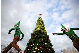 Christmas Trees Would You Buy An Upside Down One