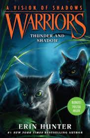 Thunder And Shadow Warriors A Vision Of Shadows Series 2
