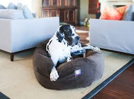 majestic pet suede bagel dog bed 40 inch chocolate chewy com