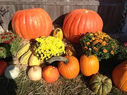 Pumpkin Farm Illinois Best by Country Corner Farm Market U0026 Pumpkin Patch Enjoy Illinois